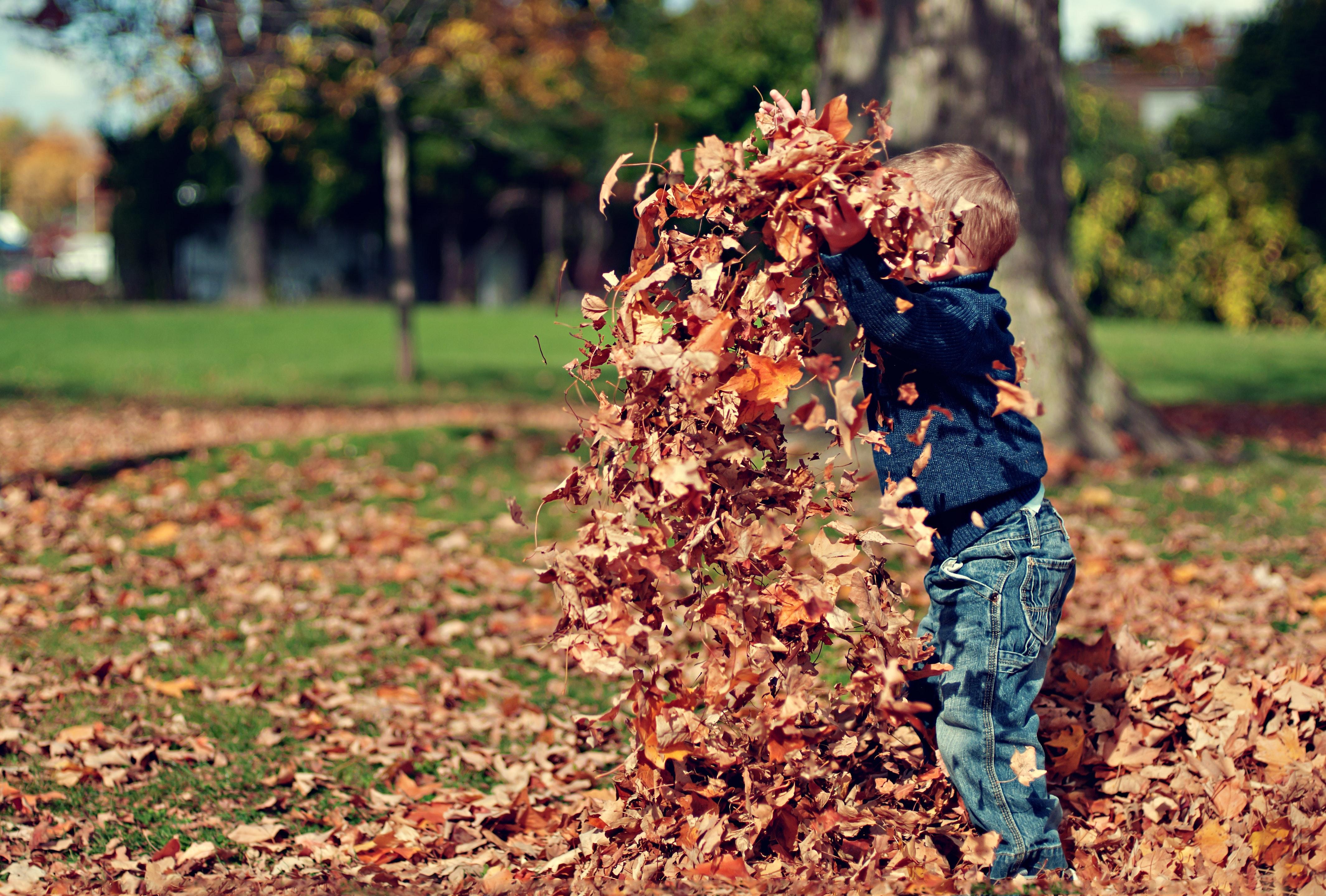 Foto: © pexels.com/Scott Webb